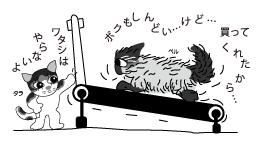 タラとペルとルームランナー